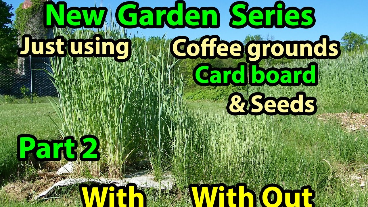 15 Using Coffee Grounds In The Garden Decor23