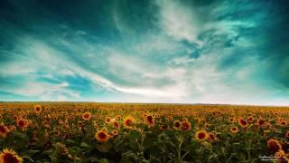 Suncatcher - Epic (Sequentia Remix)