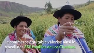 La Tribu - Tuto #4 - Le Quinoa -
