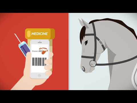 Horse Management soft and App - Horse health care system