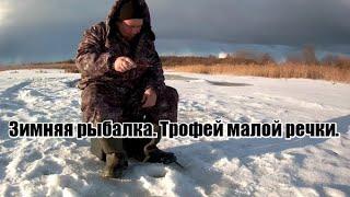 Зимняя рыбалка Трофей малой речки