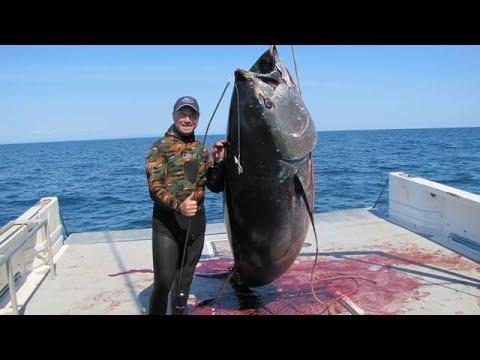 SUPER !!! Pemancing dapat Ikan Tuna Monster,Lihat Gayanya