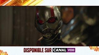 Ant-Man et La Guêpe - Disponible dès maintenant en achat digital