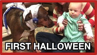 DOG COSTUMES - Riley and Baby's first Halloween - Cute and Funny
