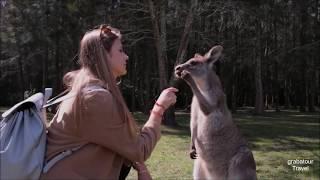 Grabatour Oz, Work & Travel in Australia   Gap Year Experience   Grabatour Travel