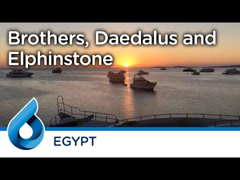 Brothers, Deadalus and Elphinstone © Per Hammerstad