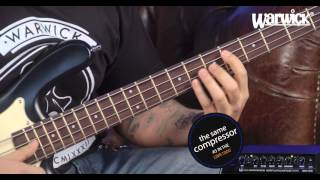 Warwick Amplifications - The LWA 500