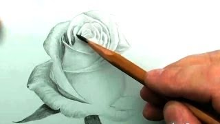 КАК нарисовать БЕЛУЮ РОЗУ карандашом(Полный курс
