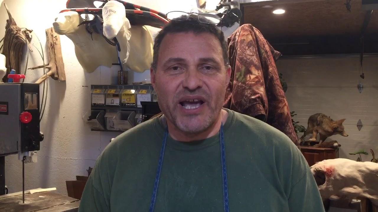 CNY taxidermist talks about fish mounts
