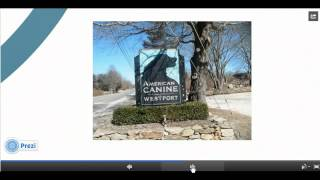 Dog Daycare Business Plan