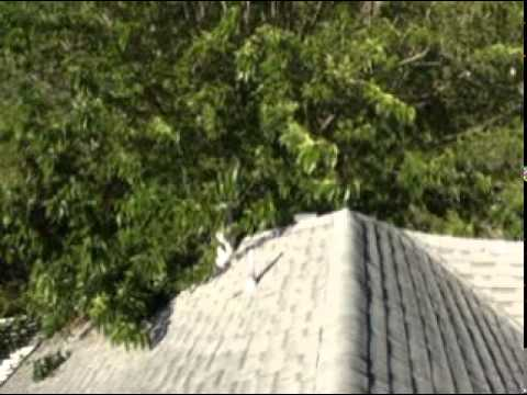 Roof Repairs Free Inspections Citrus Heights Ca California