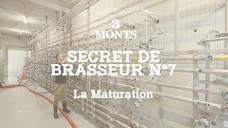 3 MONTS | Secret de Brasseur 7️⃣  La Maturation