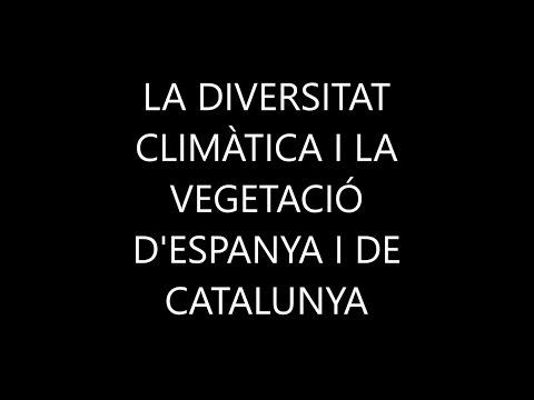 LA DIVERSITAT CLIMÀTICA I LA VEGETACIÓ D'ESPANYA I DE CATALUNYA