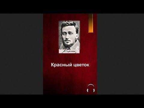Всеволод Михайлович Гаршин - Красный цветок