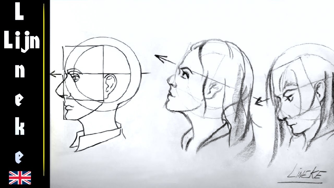 How to draw HEAD ANGLES from the side for beginners - YouTube