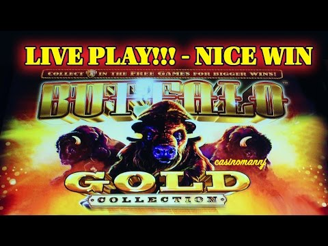 BUFFALO GOLD SLOT - LIVE PLAY! plus 2 BONUS FEATURES - *NICE WIN* - Slot Machine Bonus - 동영상