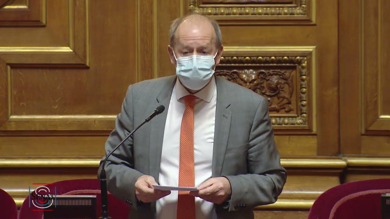 Dany WATTEBLED : Véolia-Suez : quel rôle pour l'État pour protéger notre patrimoine industriel ?