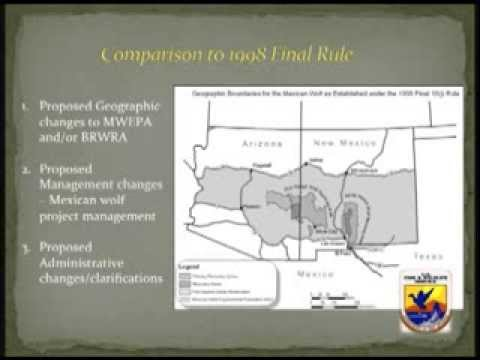 Federal Proposals Regarding Mexican Wolves in Arizona