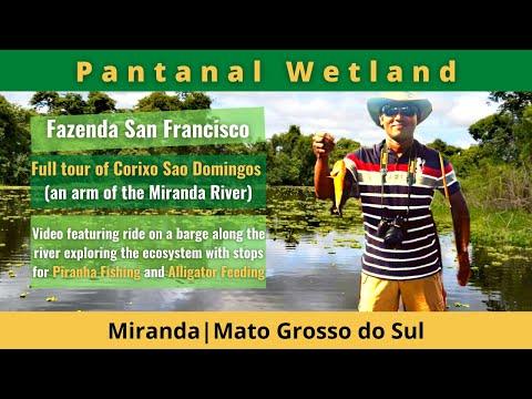 Corixo São Domingos & Piranhas Fishing, Pantanal, Brazil
