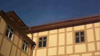 Wörlitz - in und um den Wörlitzer Park