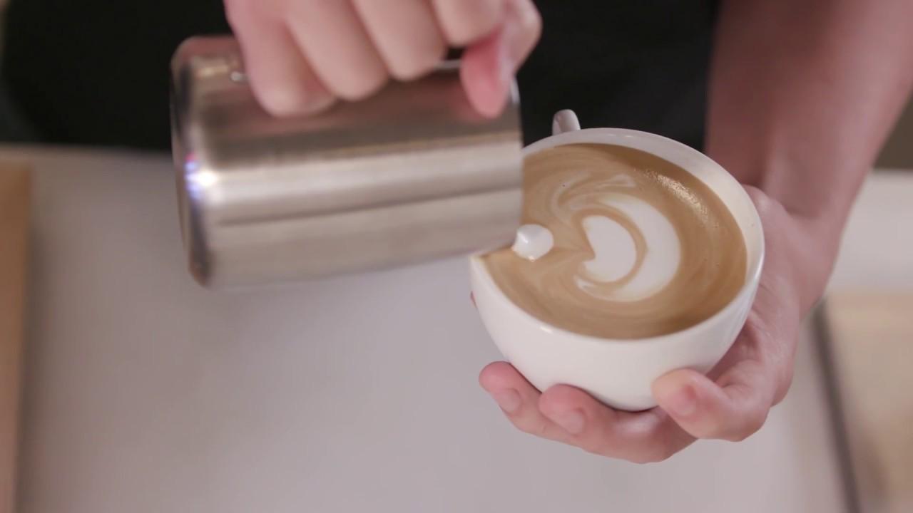 Breville Bambino Plus Espresso Maker Williams Sonoma Youtube