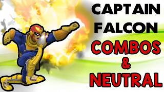 Captain Falcon (Fictional Character)