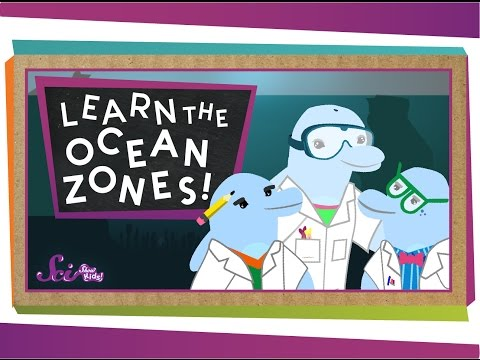 Let's Learn the Ocean Zones!