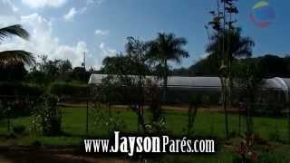 DOCUMENTAL DE HIDROPONIA 2 MOROVIS PUERTO RICO
