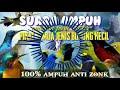 Suara Ampuh Andalan Para Master Pikat Semua Jenis Burung Kecil  Mp3 - Mp4 Download