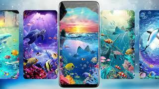 Lively Aquarium Fish Live Wallpapers Themes screenshot 1