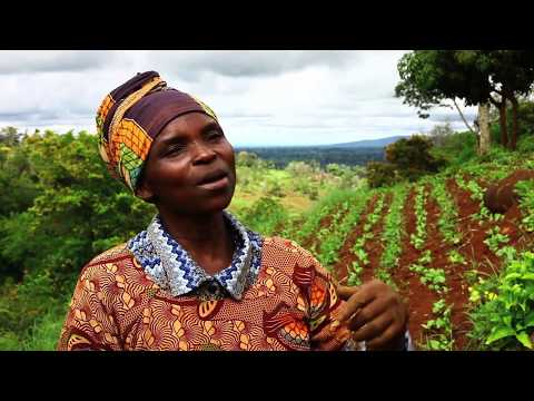 HRNS Conservation Agriculture in Tanzania