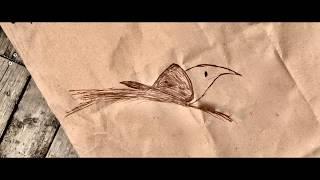 Music for a Bird: Refugee Crisis Outreach Concert