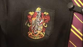 I'm Harry Potter! Funny Halloween Story (Day 1041 - 11/4/2017)