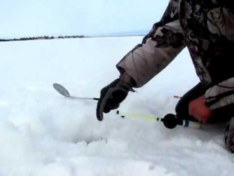 Где ловить рыбу зимой картинки