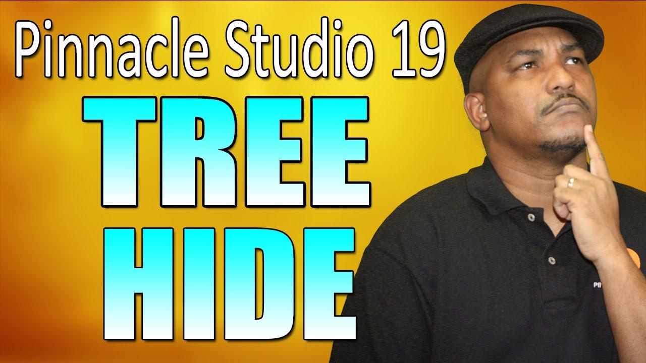 pinnacle studio 19 tutorial pdf