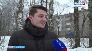 Проблема бродячих собак в Смоленске становится неразрешимой?