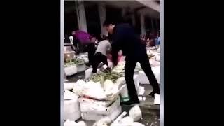 중국 공안의 노점상 강제 단속 및 과일 박살 내는 장면