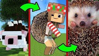 видео: Как Менялась Девушка Ёжик и её Жизненный Цикл в Майнкрафт Эволюция Minecraft Троллинг Мультик Майн
