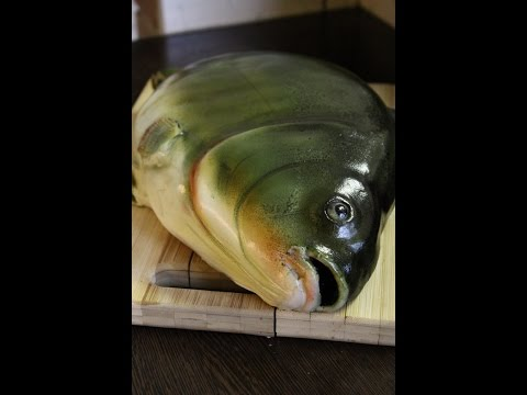 Kricky Cake Decorating: Realistic Airbrushed Fish Cake Tutorial 720p