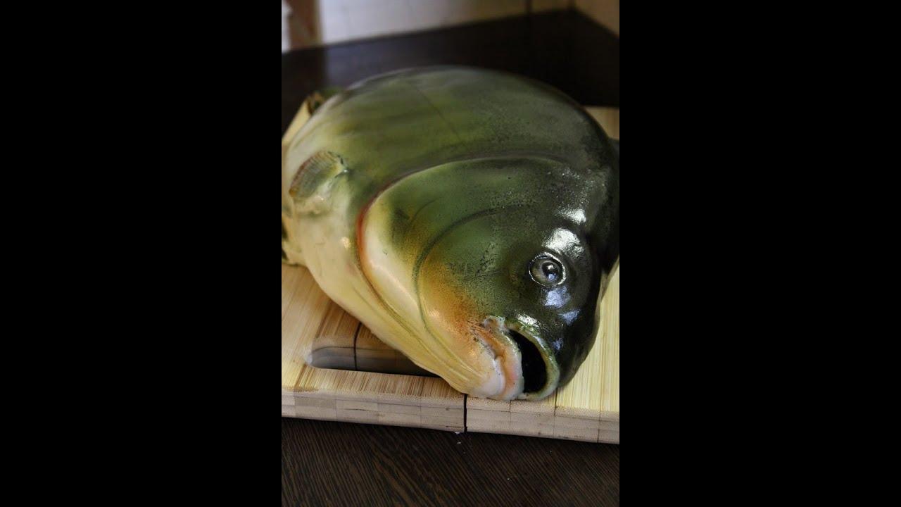 Kricky Cake Decorating: Realistic airbrushed fish cake ...