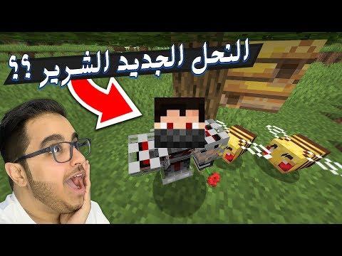 Minecraft      1.15 -    !