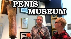 Joe Goes To The Penis Museum In Iceland