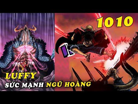 ( Phân tích One Piece 1010 ) - Luffy đạt cấp độ sức mạnh mới , Zoro trọng thương cần chữa trị