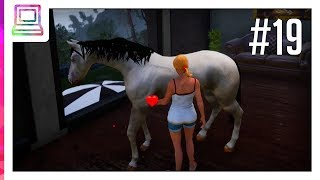 Horse Riding Deluxe (part 19) (Horse Game)