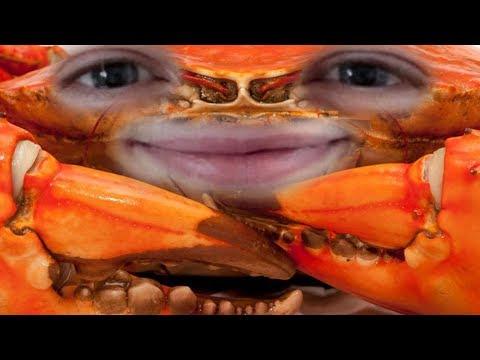 Entspannter Crabgot | Urgot Jungle [edit. Gameplay] [Deutsch]