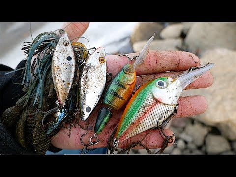 Hunting for lost fishing lures!