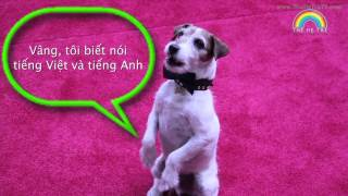 Uggie the Dog speaks to TheHeTreTV.com kids! Thumbnail