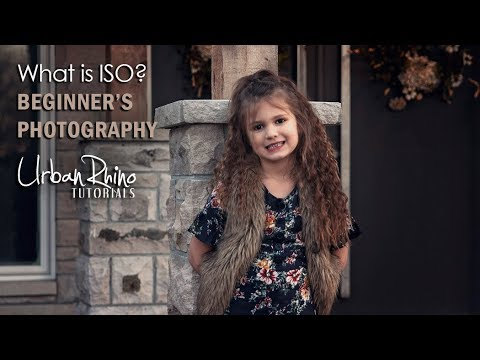 What is ISO? Beginner's Photography