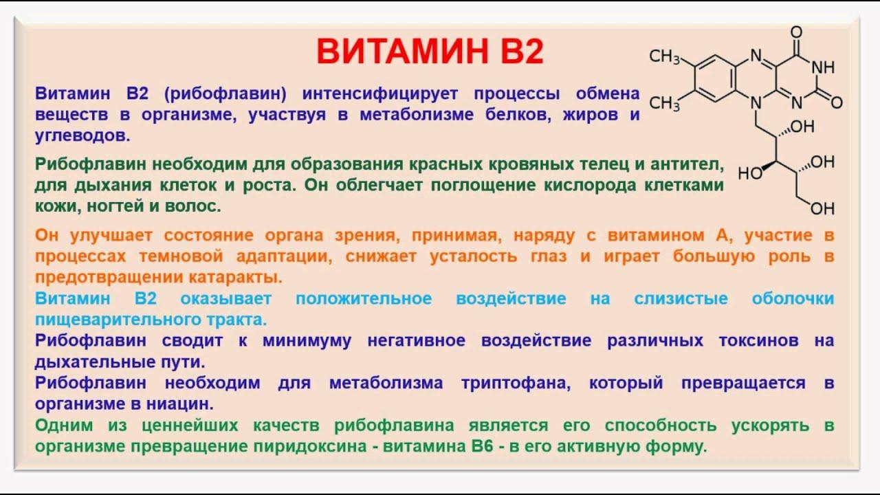 b2 vitamin és látás jövőkép iránymutatások