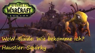 WoW-Guide: Wie bekomme ich das Haustier Squirky?